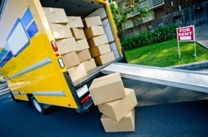 Mover Tampa Bay FL