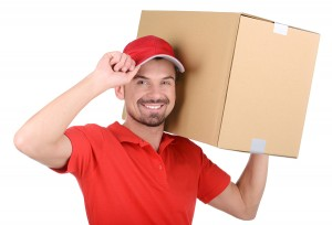 Moving Services St. Petersburg FL